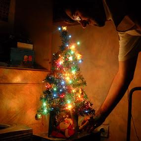 by Zeljko Secujski - Public Holidays Christmas