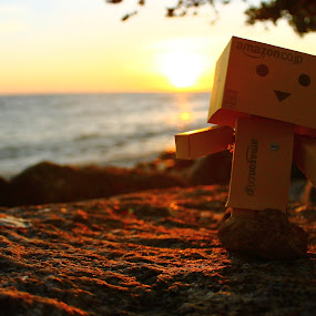 The Danbo by Adi Suda - Novices Only Objects & Still Life ( #danbo #stilllife #sunset #perak #malaysia )
