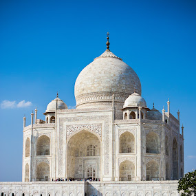 Taj Mahal Front (Angled & Portrait) by Joe Boyle - Buildings & Architecture Statues & Monuments ( history, statue, mausoleum, grand, art, taj mahal, monument, india, historical, big, artwork )
