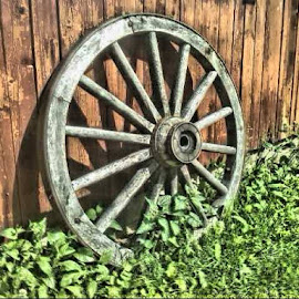 Old Wheel by Jouni Linden - Artistic Objects Antiques