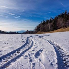 Tracks by Igor Gruber - Transportation Other