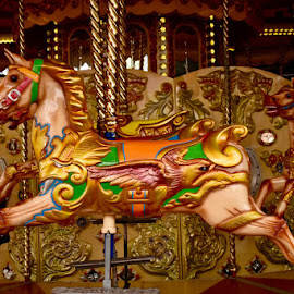 Merry Go Round  by Angela Taya - Novices Only Objects & Still Life