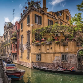 Campo S. Provolo by Ole Steffensen - City,  Street & Park  Neighborhoods ( venezia, gondola, houses, tourists, boats, venice, bridge, campo s. provolo, italy, canal )