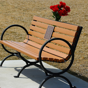Memorial Bench by Cheryl Thomas - Artistic Objects Furniture ( memorial, park, bench, flowers, parkbench,  )