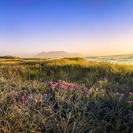 by Juan Diedericks - Landscapes Mountains & Hills ( table mountain, cape town, landscape )