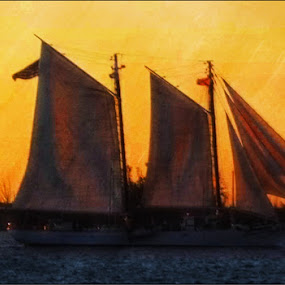 Headed for Home by Nancy Sadowski - Digital Art Things ( peaceful, sunset, ocean, boat, sailboat )