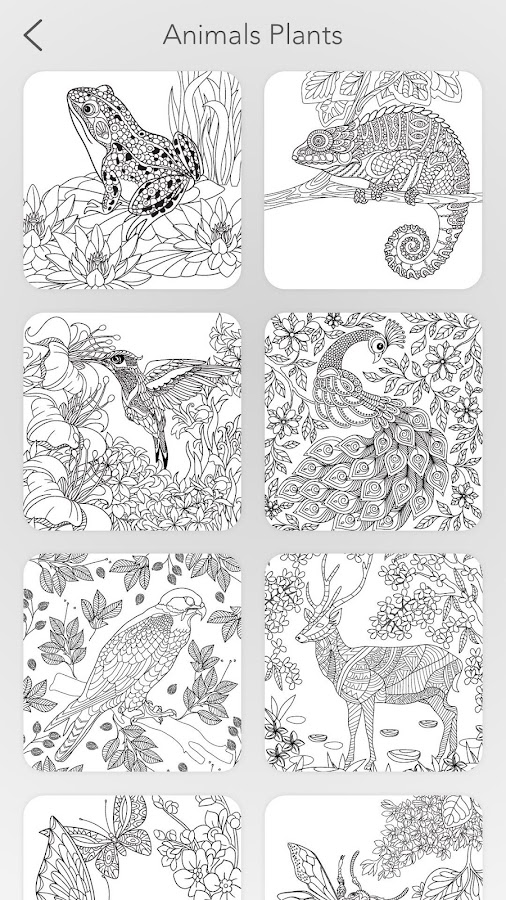 Garden Coloring Book Screenshot 7