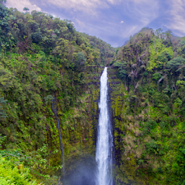 Akaka Falls by Bill Tiepelman - Landscapes Travel ( park, waterfall, akaka park, hawaii )