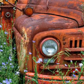 Beauty in Junk by Gwen Paton - Transportation Automobiles ( truck, junk truck,  )