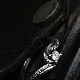 Equestrian Bride by Heidi Dennison - Wedding Other ( ring, diamonds, horse, white, romance, photography, equestrian, love, terrace, saddle, wedding, xox, gold, griffith, bc, design, dennison, engagement,  )