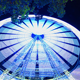 Roda gigante (ferris wheel) by Jorge Coelho - City,  Street & Park  Street Scenes ( wheel, roda, colors, night, ferris wheel )