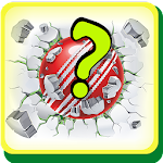 Cricketer Trivia Quiz Icon