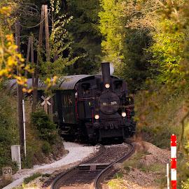Steam Locomotive MLV Zwettl Sturmexpress  by Franz  Adolf - Transportation Trains ( stram locomotive, locomotive, train )