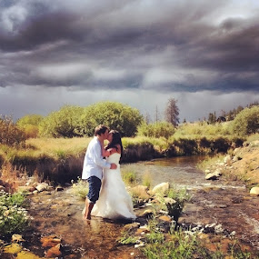 Trash the Dress by Debi Tipton - Instagram & Mobile iPhone