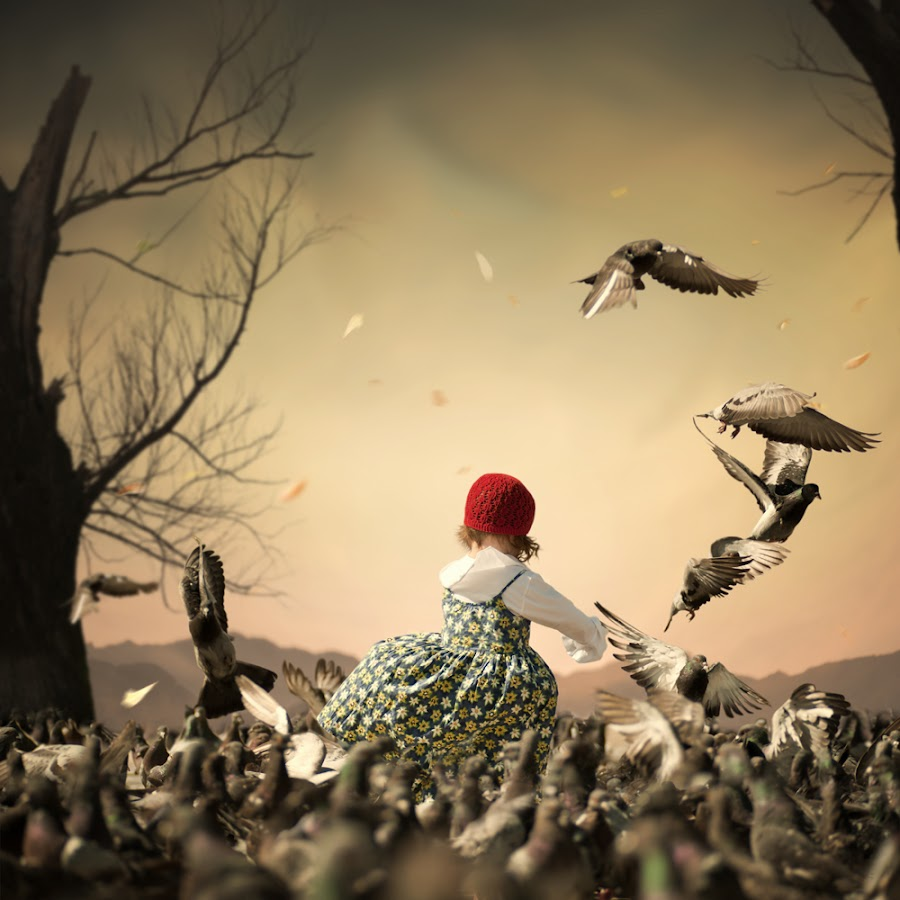 The pigeon storm by Caras Ionut - Digital Art Things ( http://www.carasdesign.ro/tutorials )