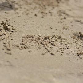 Love by Ryan Kerstein - Nature Up Close Sand ( love, sand, beaches, writing, beach )