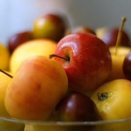 Apple by Андрей Замышляев - Food & Drink Fruits & Vegetables ( red, apple, beautiful, yellow, spring )
