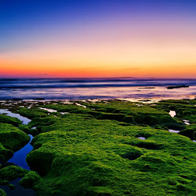 Low tide at canggu beach by Theyjun Photoworks - Novices Only Landscapes ( gnd, sony, nd, sunset, alpha, long exposure, 290 )