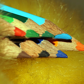 The point color pencils     by Mihir Ranjan - Artistic Objects Other Objects ( the point color pencils, close-up point of color pencil, artistic objects, close up, pencils )
