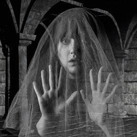 Freaky Friday by Brian Pierce - Digital Art People ( monochrome, castle, ghost, horror, spectre )