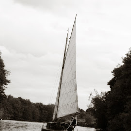 by Sonya Ungermann Ryan - Transportation Boats ( water, black and white, sailing, lake, sailboat )