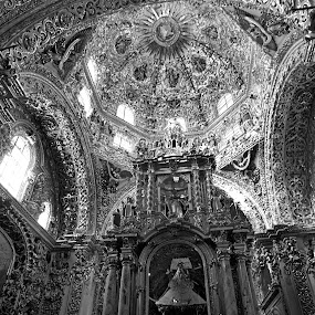 Church at Puebla IV by Cristobal Garciaferro Rubio - Buildings & Architecture Other Interior ( interior, catholic, building, bench, church, black and white, puebla, dome, monotone )