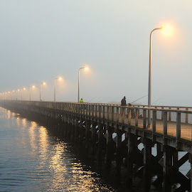 Fishing in the mist by Sue Walker - Buildings & Architecture Bridges & Suspended Structures ( calm, fishermen, peaceful, northumberland, serene, pier, fishing, evening, misty,  )