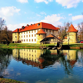 Castle Otočec ob Krki, Slovenia by Andjela Miljan - Buildings & Architecture Public & Historical