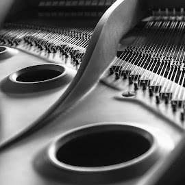 Grand Inside  6628 by Karen Celella - Artistic Objects Musical Instruments ( music, piano, focus stacking, black and white, instrument )