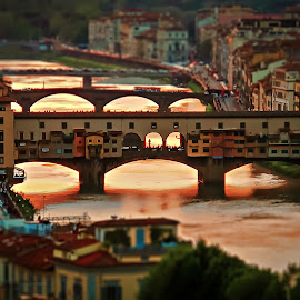 Ponte Vecchio by Vinogradov Florent - City,  Street & Park  Historic Districts ( ponte, tuscany, firenze, italy, arno )