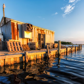 The Shack on the Water by Carol Ward - Buildings & Architecture Decaying & Abandoned ( water, building, crab company, wingate, maryland, architecture, decaying )