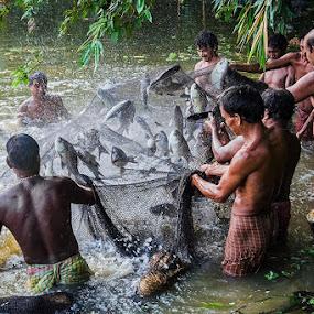 Fishing ! by Saumalya Ghosh - City,  Street & Park  Neighborhoods