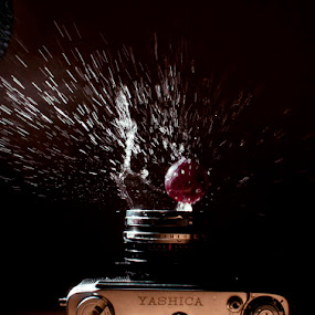 Yashica by Ivan Vukelic - Artistic Objects Other Objects ( water, film, yashica, splash, vukelic, ivo, camera, vuk )