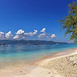 Gili Trawangan, Lombok, IndonesiaVideo:Snorkeling at Lombok, Indonesiahttp://youtu.be/fKe8YdUF7twTue, 2014:04:22 10:25:00Taken with iPhone 5©Nikita Hengbok by Nikita Hengbok - Landscapes Beaches ( tranquil, relax, indonesia, gili trawangan, lombok, beach, tranquility, relaxing )