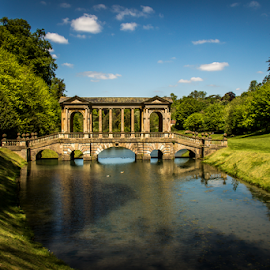 Prior Park bridge by Mandy Hedley - Landscapes Travel ( park, bath, bridge, palladian, prior,  )