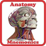 Anatomy Mne.. file APK for Gaming PC/PS3/PS4 Smart TV