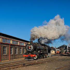 SuziGirl by Rob Vandongen - Transportation Trains