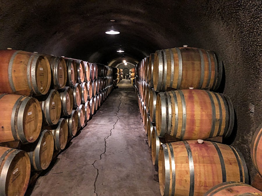 Castello di Amorosa -Underground Cellars by Krishna Murukutla - Buildings & Architecture Other Interior ( wine, castello di amorosa, wine barrels, cellars, portrait,  )