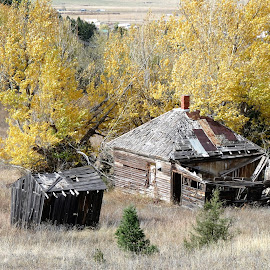 Abandoned House by James Oviatt - Buildings & Architecture Decaying & Abandoned