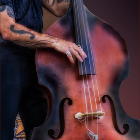 0469-AOMI-0719-05-15 by Fred Herring - Artistic Objects Musical Instruments (  )
