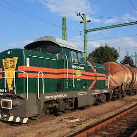 469-004 by Nagy Attila - Transportation Trains ( 123 )