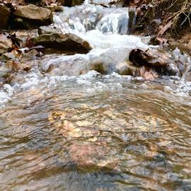 Running water  by Amanda Burton - Nature Up Close Water ( water, nature, creeks )