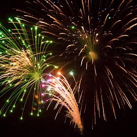Fireworks by Jennifer  Loper  - Public Holidays July 4th ( gold, red, celebration, green, night, july 4, fireworks, holiday, america )