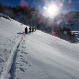 Skitouring by Igor Gruber - Sports & Fitness Snow Sports ( skitouring )