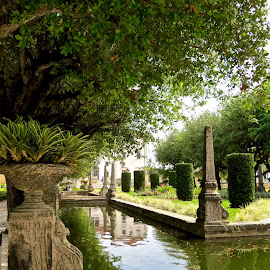Shadows on the Water at Vizcaya by Michael Villecco - City,  Street & Park  Historic Districts