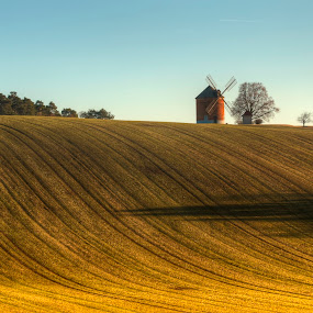 Field with mill by Klaus Müller - Landscapes Prairies, Meadows & Fields ( field, mill, windmill,  )
