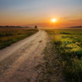 Warm summer memories by Justinas Kondrotas - Landscapes Prairies, Meadows & Fields ( meadow, summer, road, sunrise, light, mist )