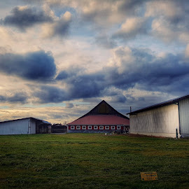 farm  by Todd Reynolds - Buildings & Architecture Other Exteriors