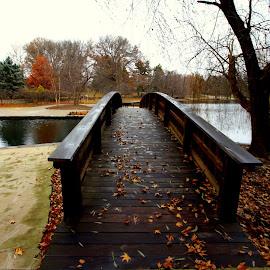 by Dan Doran - City,  Street & Park  City Parks (  )