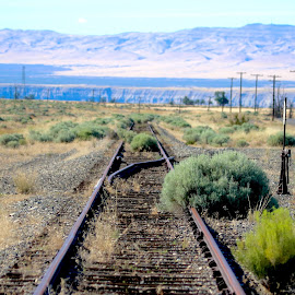 Abandoned Railroad Tracks  by Julia Van Klinken Myers - Landscapes Deserts ( railroad tracks, desert, railway, railroad, lines, forgotten, shapes, abandoned )